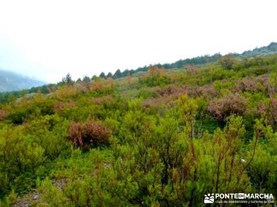 Ascenso al pico Ocejón [Serie Clásica]excursiones culturales viajes organizados fin de semana sing